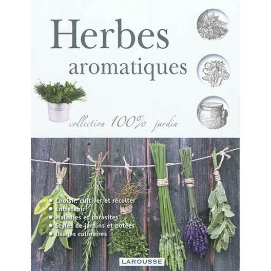 herbes aromatiques larousse leroy merlin. Black Bedroom Furniture Sets. Home Design Ideas