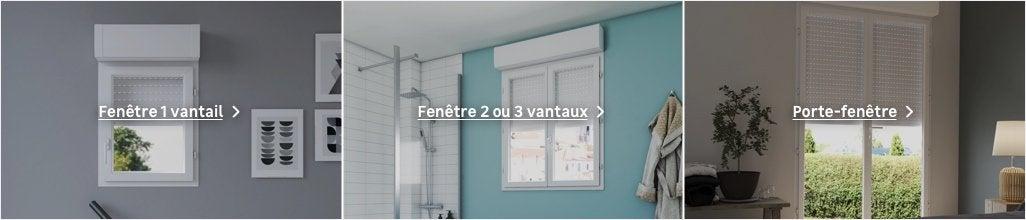 Fenêtre Avec Volet Roulant Intégré Au Meilleur Prix Leroy
