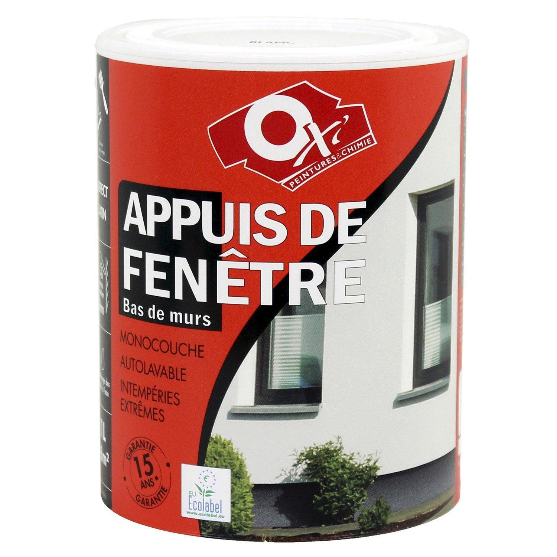 Peinture Appui De Fentre Oxytol Blanc L With Appui De Fenetre Exterieur  Aluminium