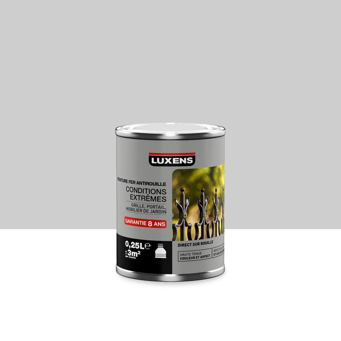 Peinture Fer Extérieur Luxens Argent 025 L Leroy Merlin