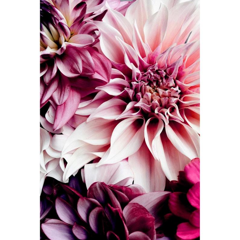 Toile Imprimée Dahlia Multicolore Artis L45 X H30 Cm