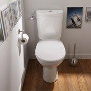 Remplacement express en 48 h d'un WC par Leroy Merlin
