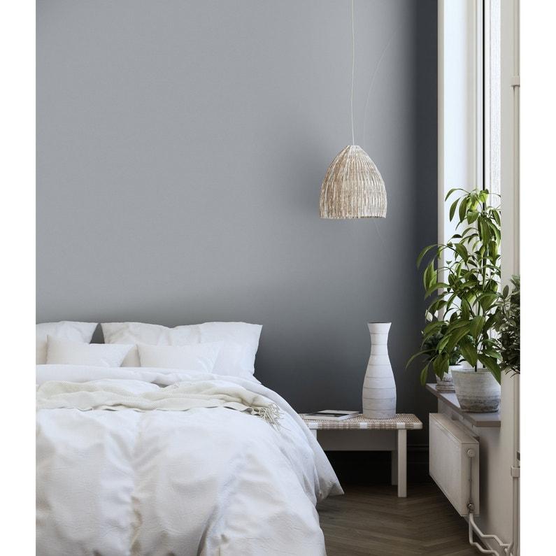 Peinture mur, boiserie, radiateur Murs et boiseries RIPOLIN, gris galet,  2.5 l,
