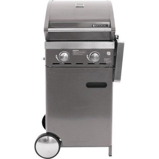 barbecue gaz naterial florida