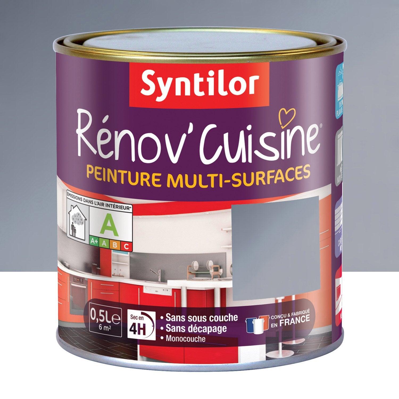 Peinture R Nov Cuisine Syntilor Gris Inox 0 5 L Leroy Merlin # Photo Meuble De Cuisine Bois Et Inox