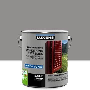 Peinture bois extérieur Conditions extrêmes LUXENS, gris galet n°3, 2.5 l