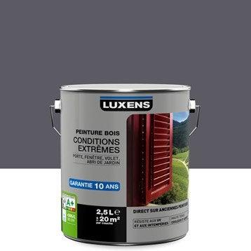 Peinture bois extérieur Conditions extrêmes LUXENS, gris galet n°1, 2.5 l