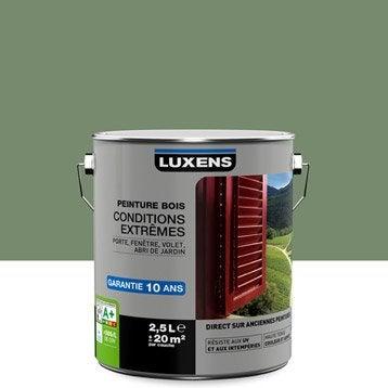 Peinture bois extérieur Conditions extrêmes LUXENS, vert olivier, 2.5 l