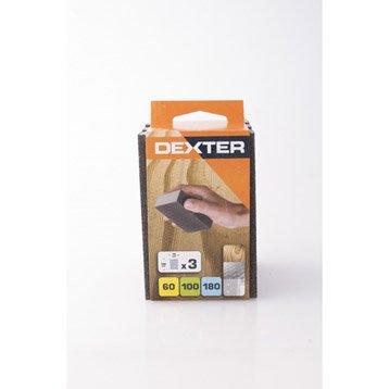 Lot de 3 éponges abrasives DEXTER, 100 x 70 mm grains 180/100/60
