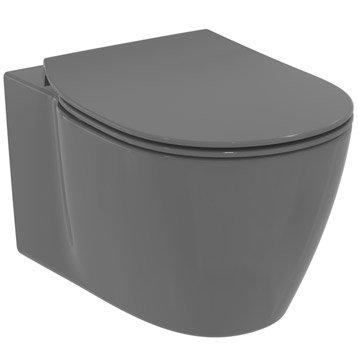 Wc suspendu wc abattant et lave mains toilette leroy merlin - Leroy merlin toilette ...