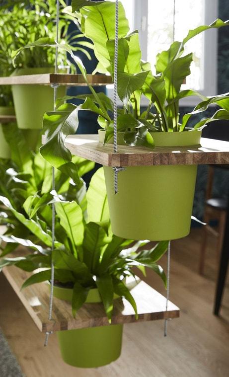 Retrouvez toutes nos photos leroy merlin for Etageres plantes exterieur