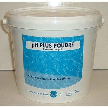 entretenir l 39 eau de piscine traitement de l 39 eau de la piscine leroy merlin. Black Bedroom Furniture Sets. Home Design Ideas