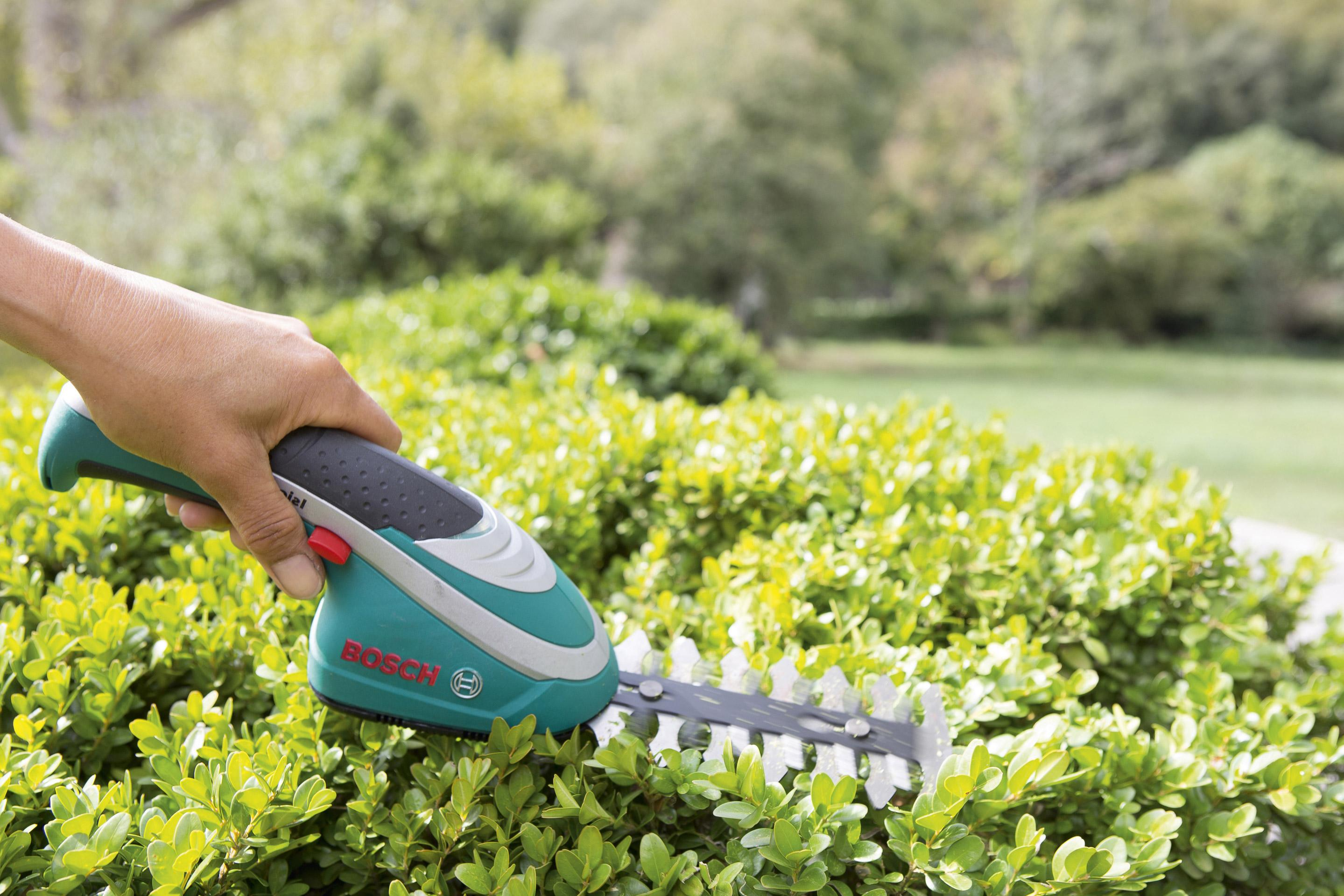 Cisaille a buisson pour sculpter et decorer buis buisson et arbuste