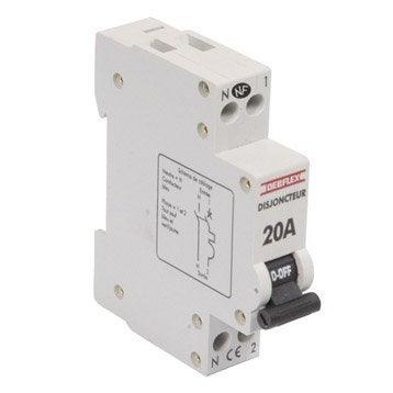 Disjoncteur phase + neutre DEBFLEX 20 A