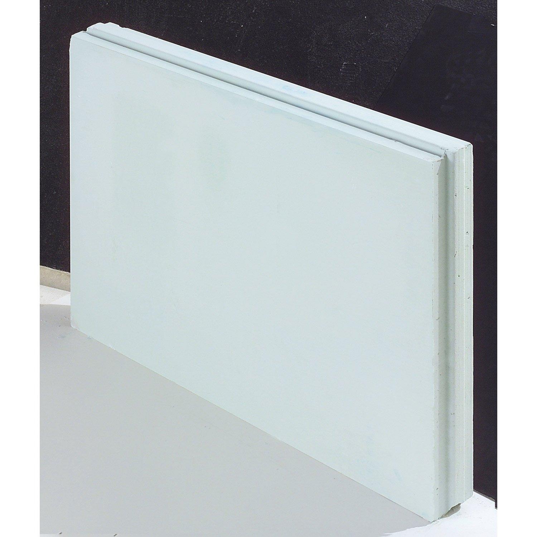 Cloison Hydrofuge Pour Salle De Bain ~ carreau de pl tre plein hydrofuge l 66 x l 50 x ep 5 cm leroy merlin
