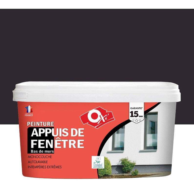 Peinture Appui De Fenêtre Oxytol Gris Anthracite 25 L Leroy Merlin