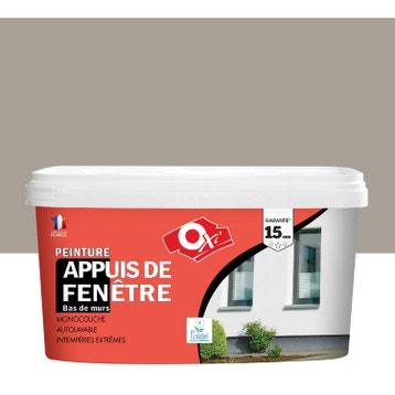 Peinture Façade, Crépi De Façade, Appui De Fenêtre Et Soubassement