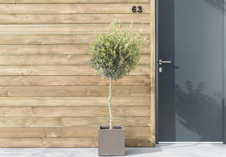 clin pour bardage douglas vert sancy 2 5 m leroy merlin. Black Bedroom Furniture Sets. Home Design Ideas