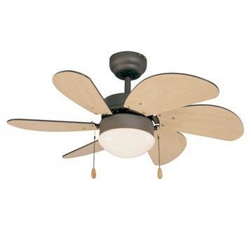 Chauffage climatisation globe pour lampe ventilateur - Globe pour ventilateur de plafond ...