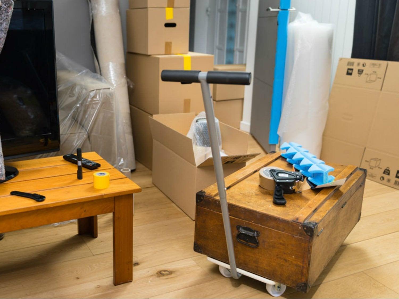 chariot pliable standers charge garantie 150 kg leroy merlin. Black Bedroom Furniture Sets. Home Design Ideas