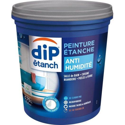 Peinture anti humidit dip gris perle leroy merlin - Peinture anti eau ...