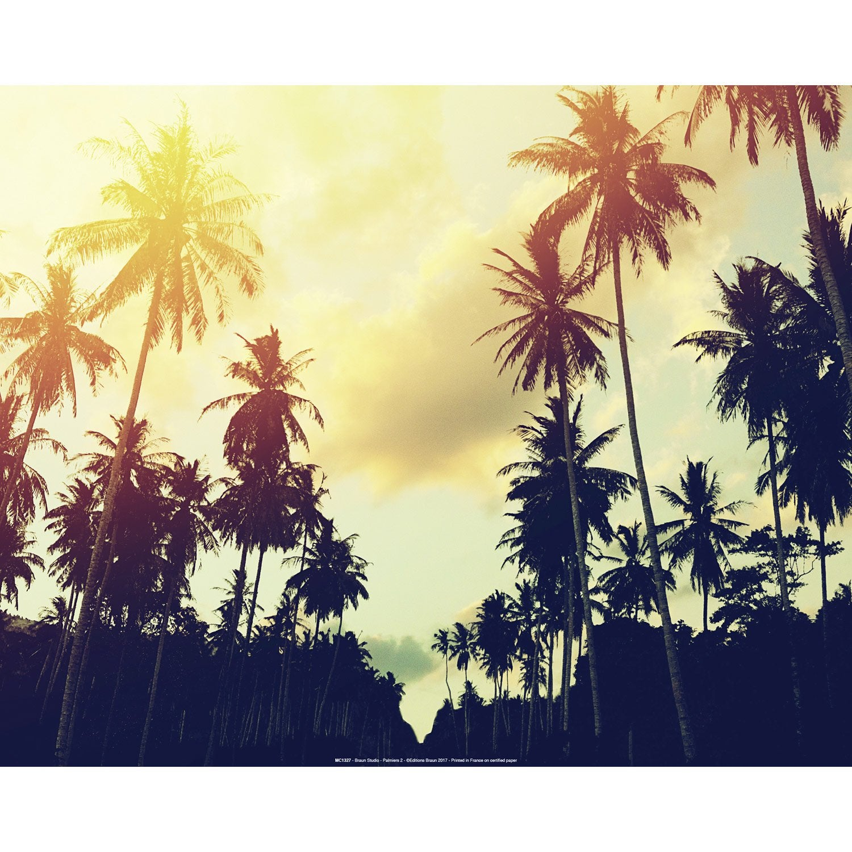 Affiche Palmiers l.51 x H.41 cm