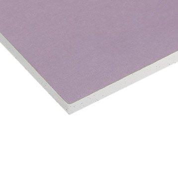 Plaque de plâtre feu NF M0 rose 2.5 x 1.2m, BA13, entraxe 60 cm