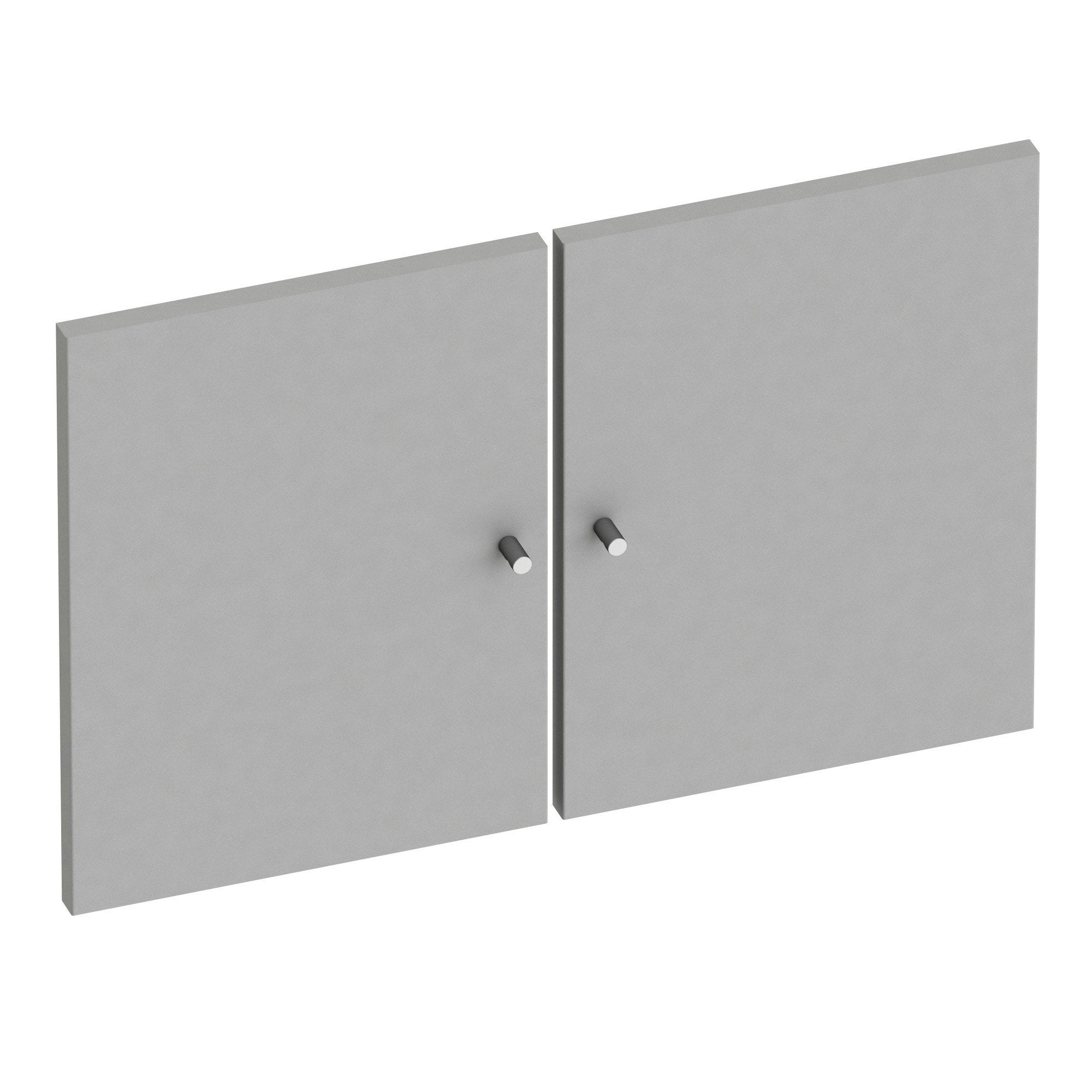 Lot de 2 Portes battantes SPACEO Home 40 x 30 x 1.6 cm, anthracite