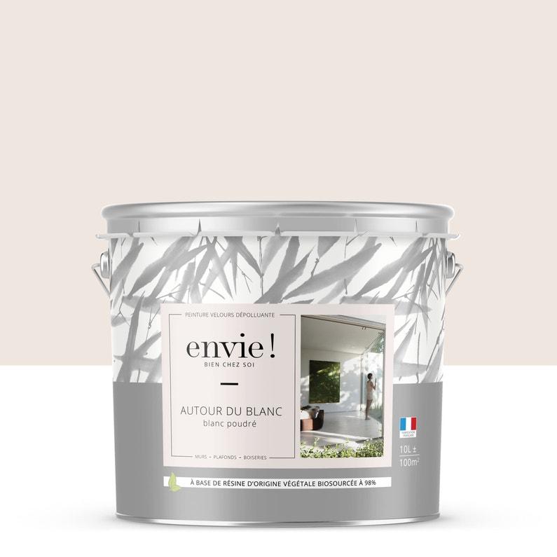 Peinture Envie Mur Plafond Et Boiserie Blanc Poudré Velours 10 L