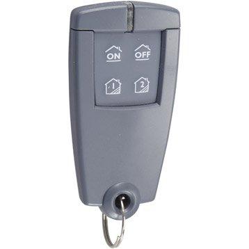 Télécommande porte clé bi-directionnelle 4 touches DELTA DORE 410413328
