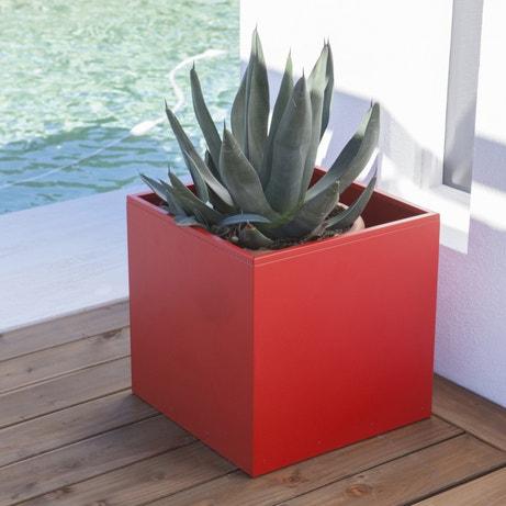 Un pot de fleurs cube rouge adapté à l'aloé vera