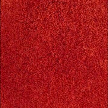 tapis shaggy agathe rouge rouge n 3 170x120 cm. Black Bedroom Furniture Sets. Home Design Ideas