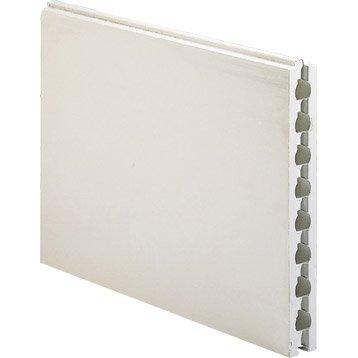 Carreau de plâtre creux hydrofuge L.66 x l.50 x Ep.7 cm