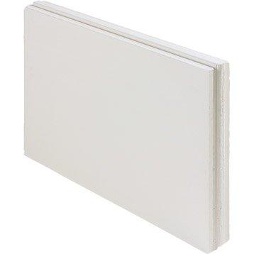 Carreau de plâtre plein L.66 x l.50 x Ep.5 cm