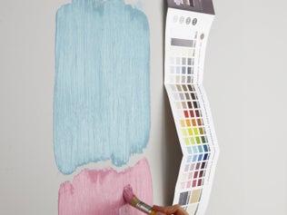 Tout savoir sur la couleur