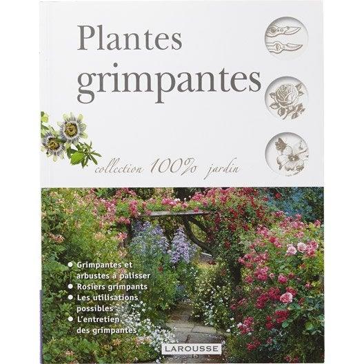 Plantes grimpantes larousse leroy merlin - Support plantes grimpantes leroy merlin ...