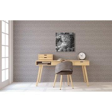 Toile imprimée Léopard allongé l.40 x H.40 cm