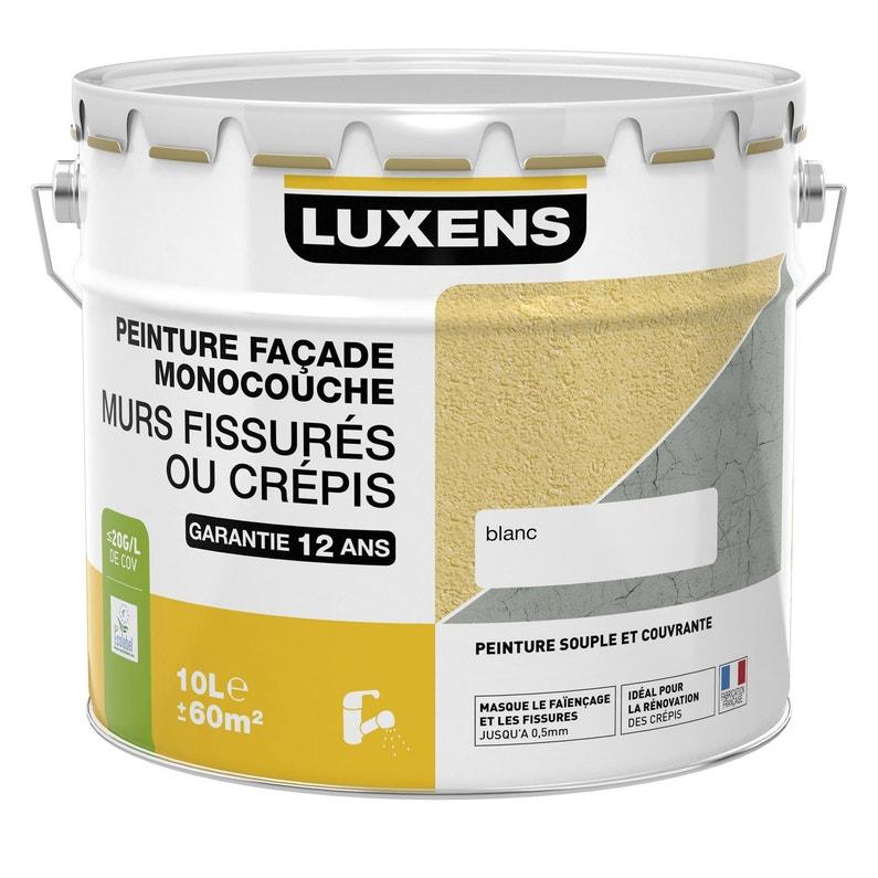 Peinture Façade Murs Fissurés Luxens Pierre 10 L