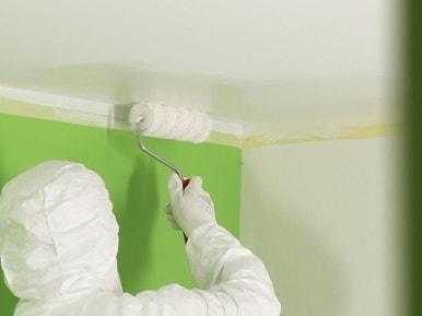 Comment Peindre Un Plafond Leroy Merlin