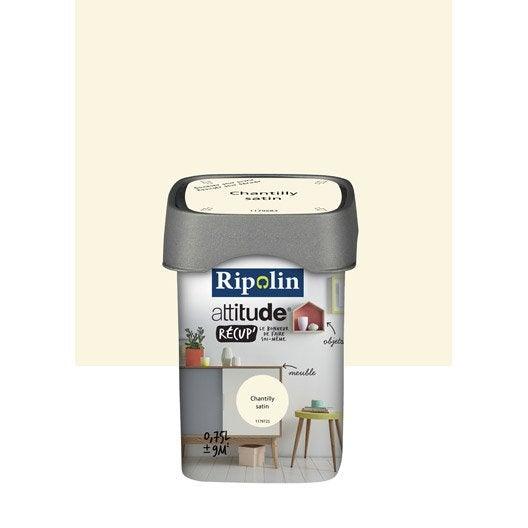 Peinture de r novation attitude r cup 39 ripolin chantilly - Peinture de renovation ...
