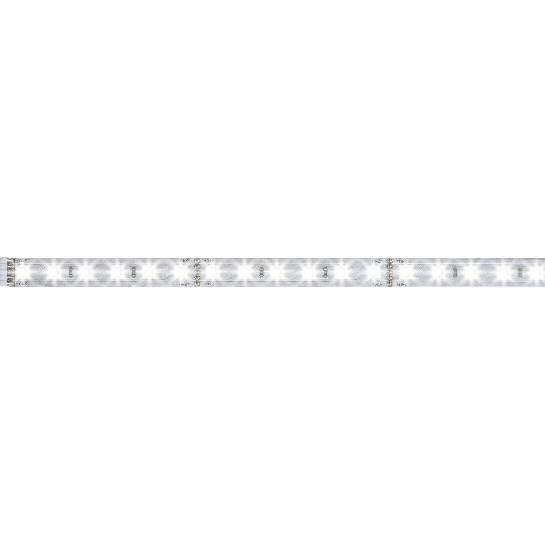 280 50m Paulmann Blanc Du Led Jour Maxled 6500k Ruban Lumière Lumens 0 Tc5FulKJ13