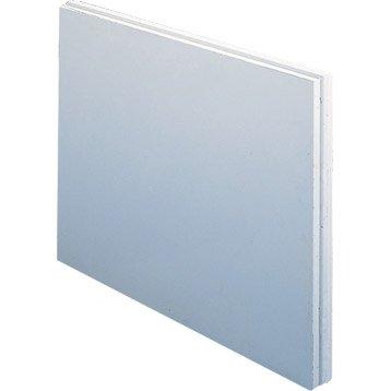 Carreau de plâtre plein hydrofuge L.50 x l.66 x Ep.10 cm