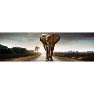 Tableau Elephant Maison Du Monde Stunning Des Images