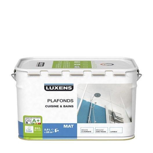 Peinture mur et plafond blanc peinture int rieure for Peinture cuisine mat