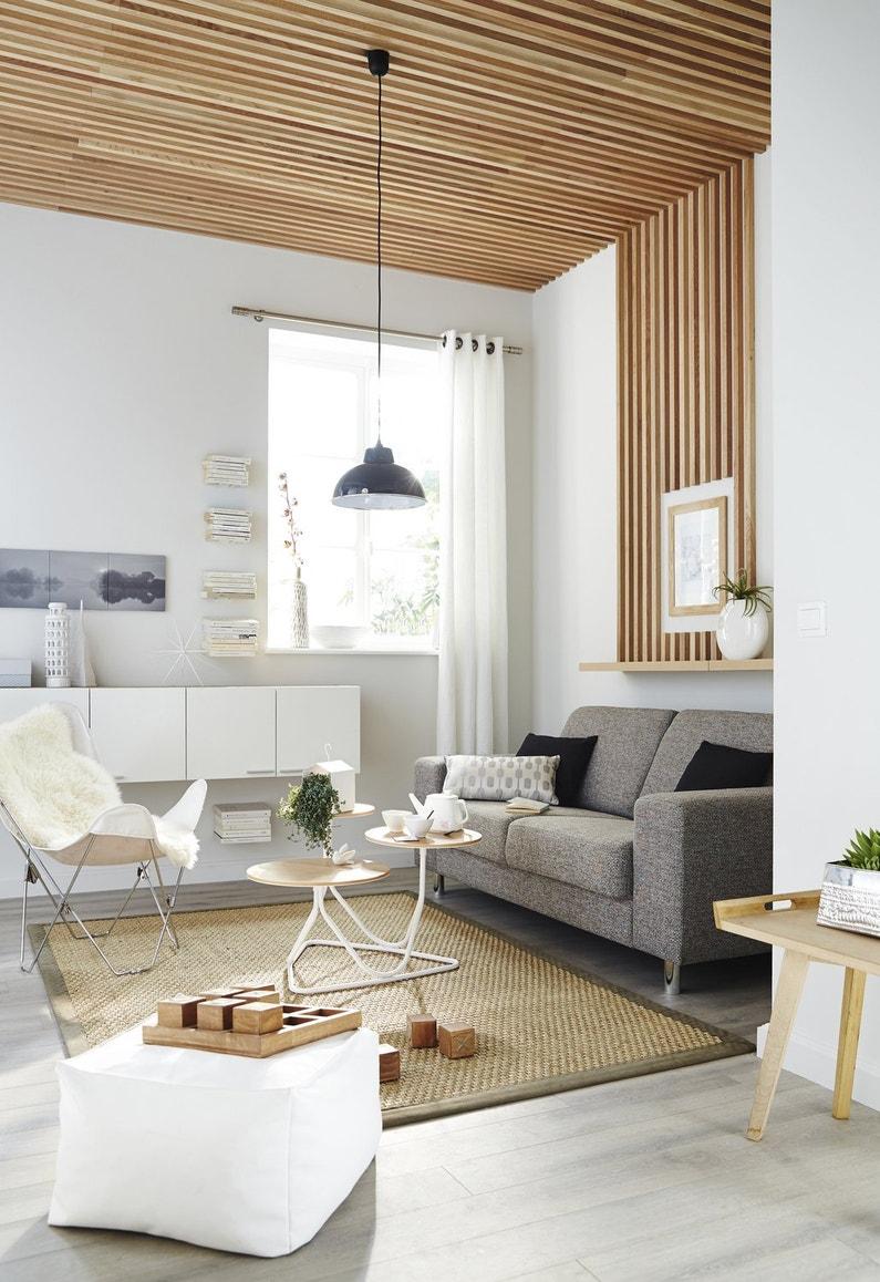 salon avec plafond en bois leroy merlin. Black Bedroom Furniture Sets. Home Design Ideas