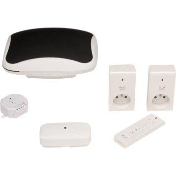 Box domotique et kit complet domotique et objets connect s au meilleur prix leroy merlin - Maison autonome prix ...