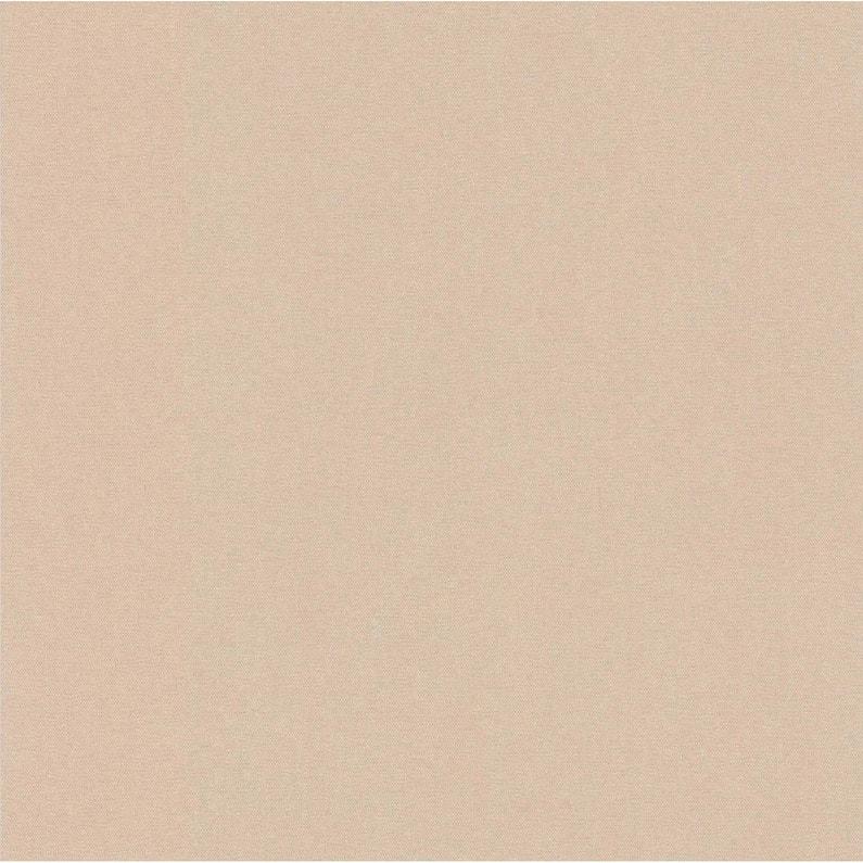 Papier Peint Expanse Uni Couleur Matiere Beige Clair Leroy Merlin