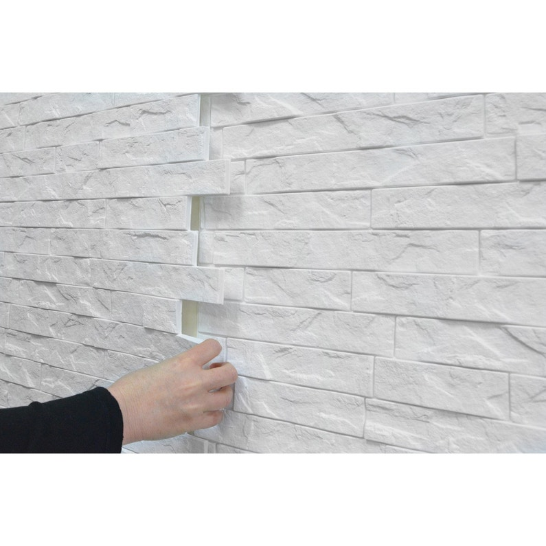Panneau Mural Pvc Blanc Lisse Innovera Decor L 60 5 X L 60 Cm Ep