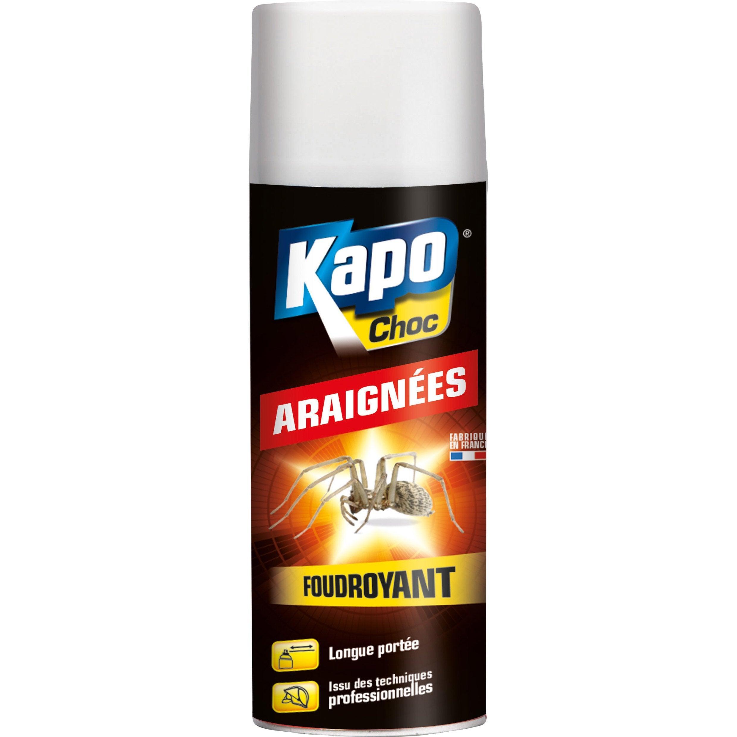 Araignées L Kapo0 4 Aérosol Insecticide Pour QxrCBhtsdo