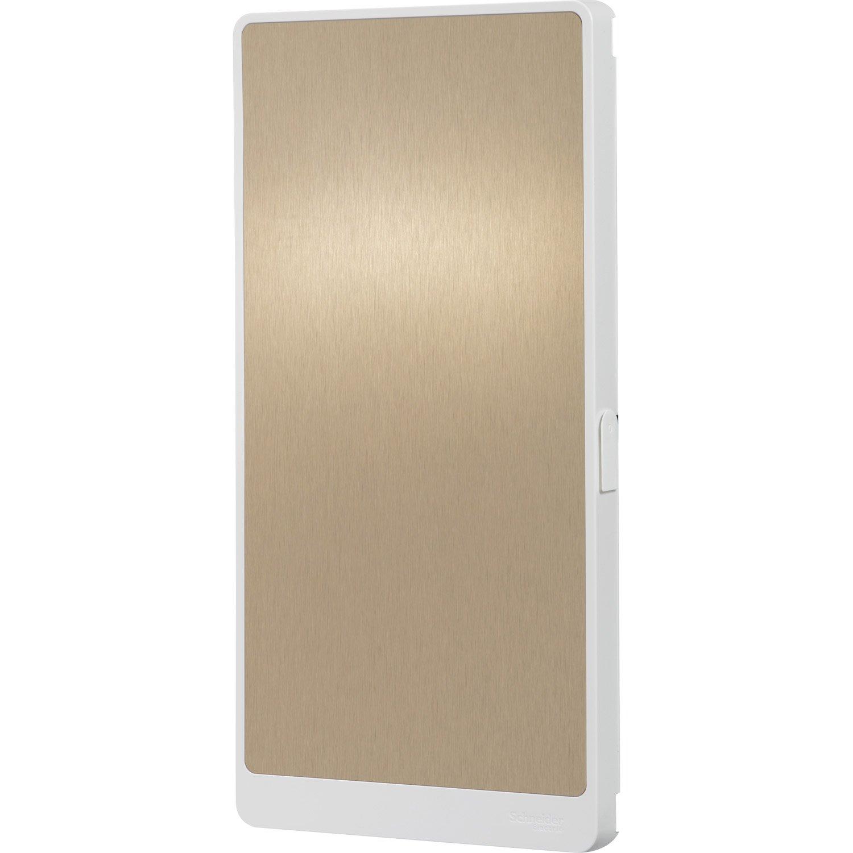 porte pour tableau lectrique schneider electric 3 rang es 39 modules leroy merlin. Black Bedroom Furniture Sets. Home Design Ideas